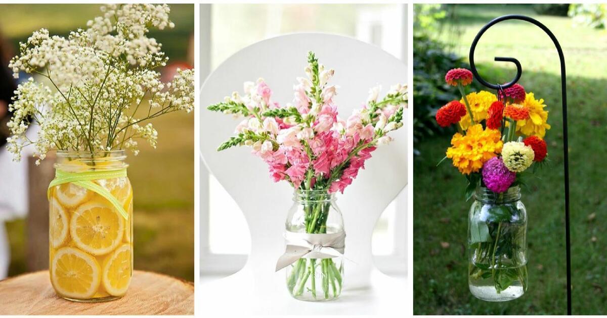 Nyári és őszi virágos növények a Michigan Gardensben