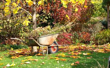 Őszi tennivalók a kertben
