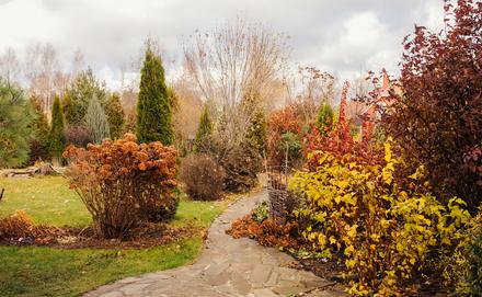 Novemberi tennivalók az udvaron